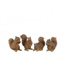 Un mini écureuil