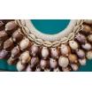 Un collier de vrais coquillages