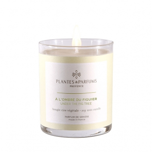 https://decodeco-etc.com/1446-thickbox_alysum/bougie-végétale-parfumée-fleur-de-coton.jpg