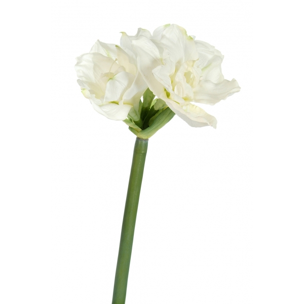 Amaryllis artificiel d co d co etc for Les fleurs amaryllis